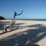 Anguilla-Limeston